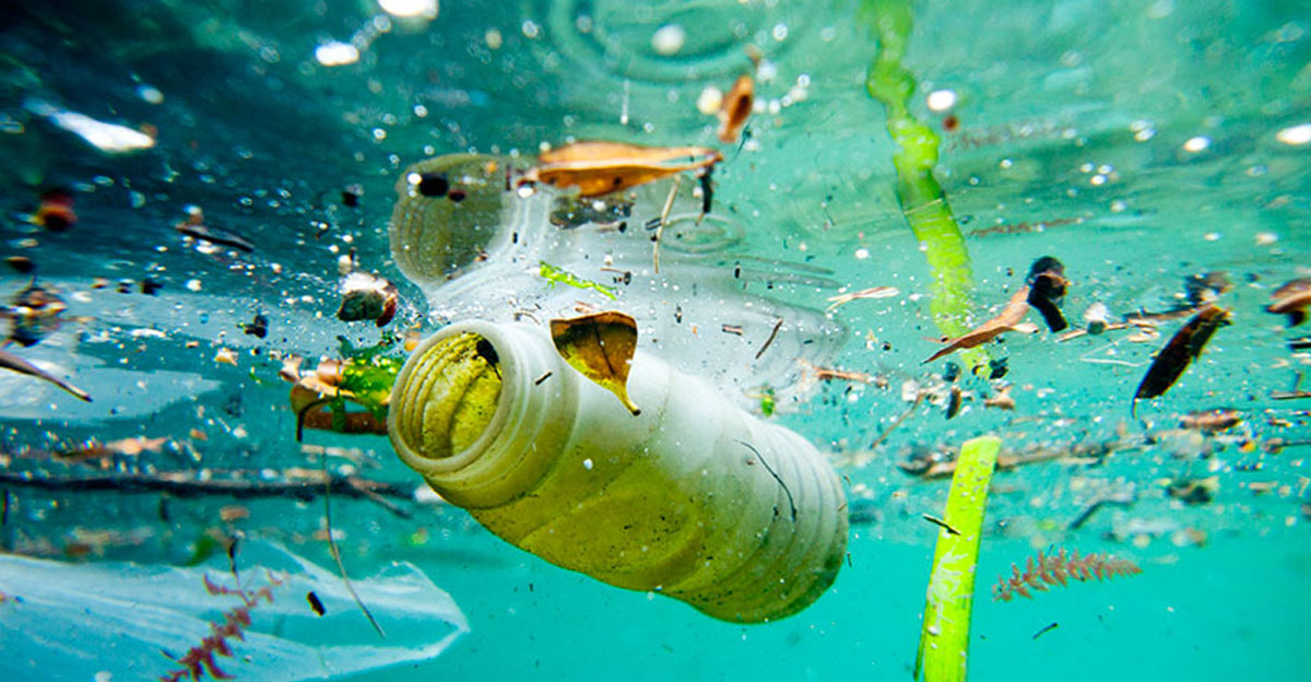 Plastic in the oceans threatens food supplies as fish shortages